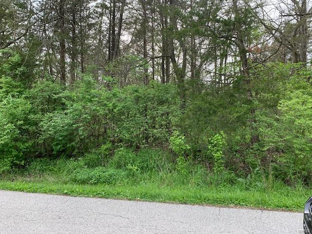 0 Lot 16 Manor Crest Dr Property Photo - House Springs, MO real estate listing