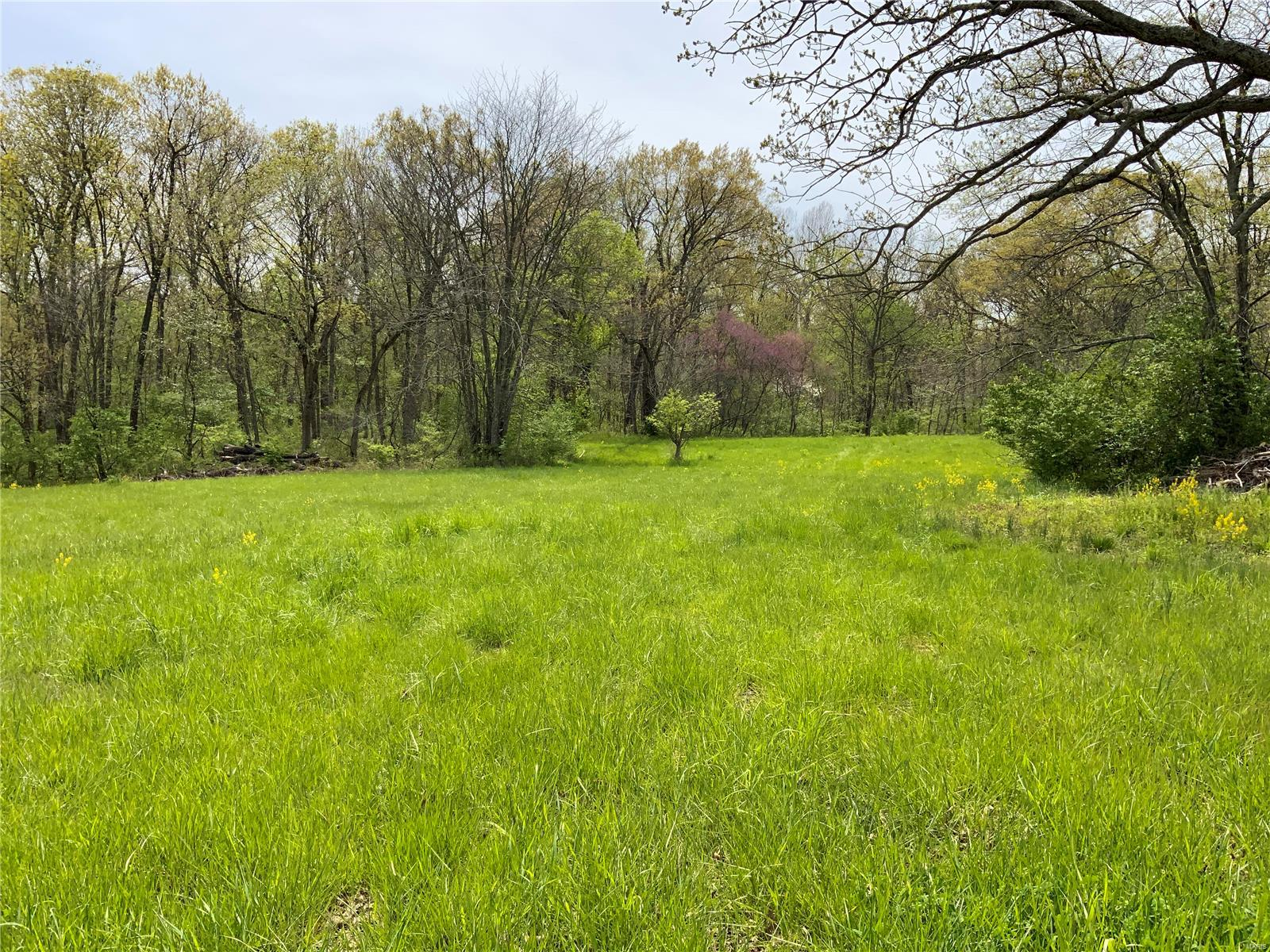 0 Lot 7 Schnarre Road Property Photo - Foristell, MO real estate listing