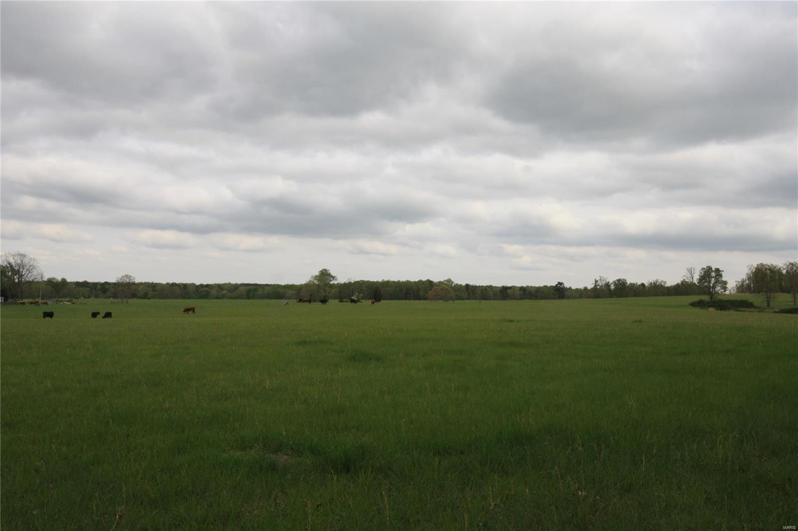 0 Highway P Property Photo - Lowndes, MO real estate listing