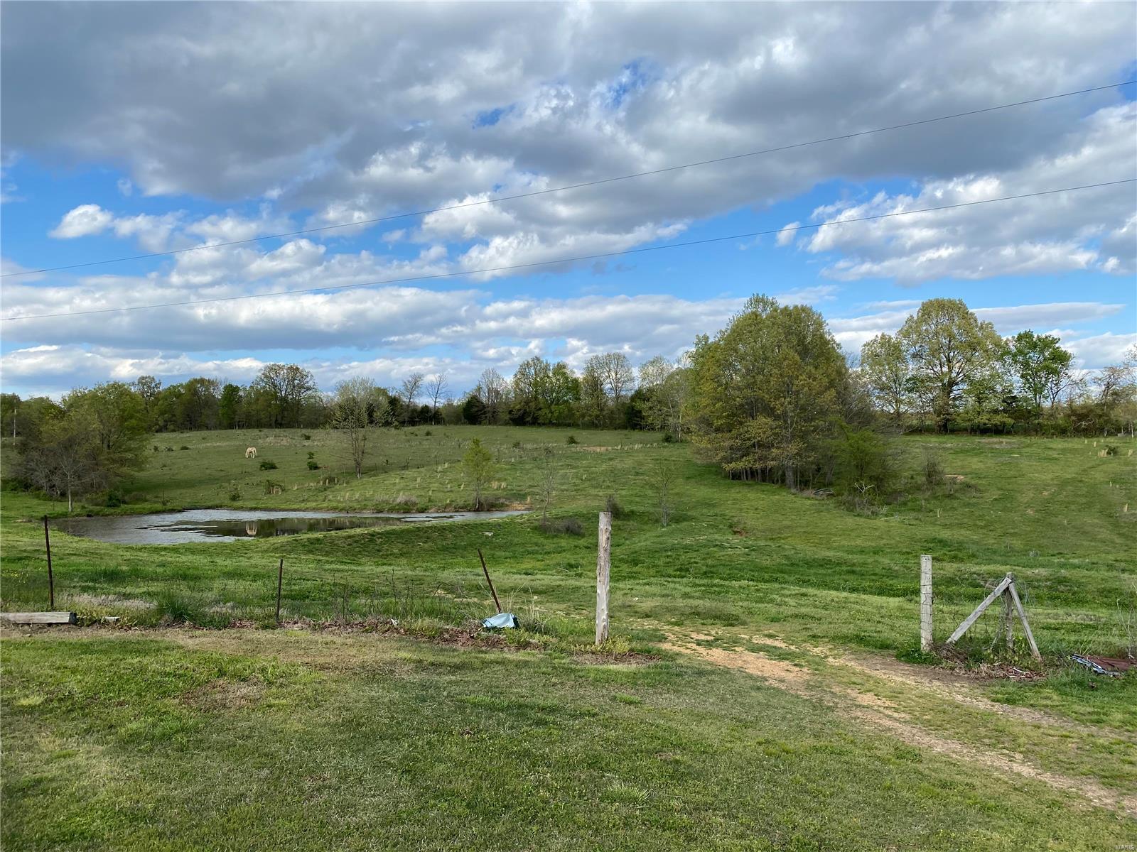 598 Ripley Z5 Property Photo - Gatewood, MO real estate listing