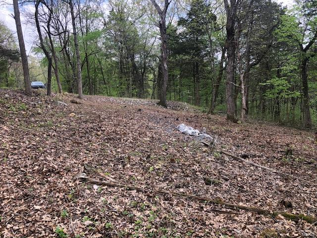 0 Valley Way Drive Property Photo - New Florence, MO real estate listing