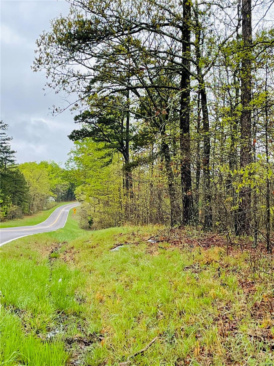 0 VV Hwy Property Photo - Salem, MO real estate listing