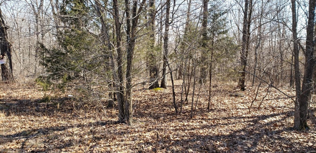 0 State Hwy A Property Photo - Marquand, MO real estate listing