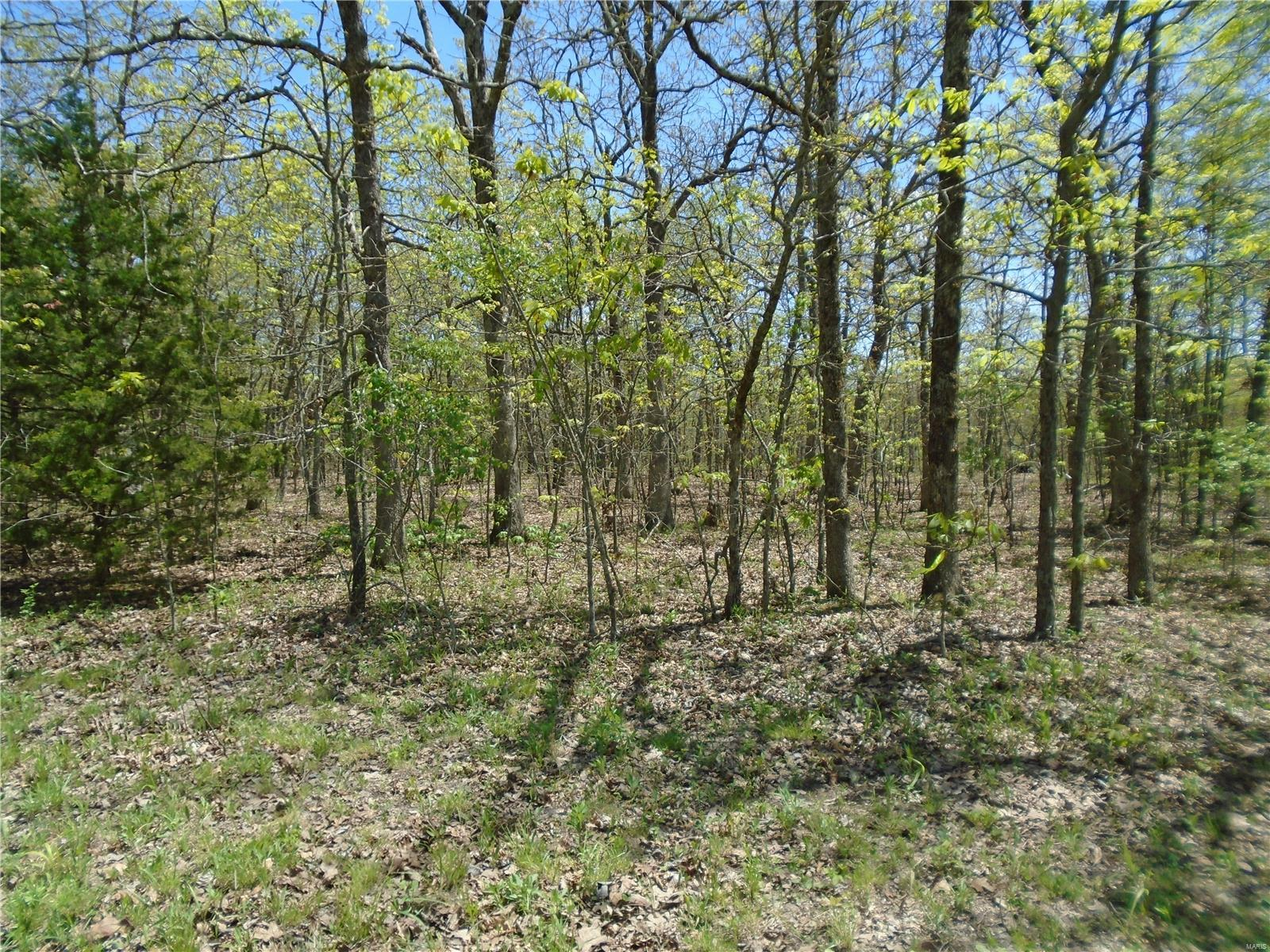 2 Whitetail Glen Trail Property Photo - Ironton, MO real estate listing