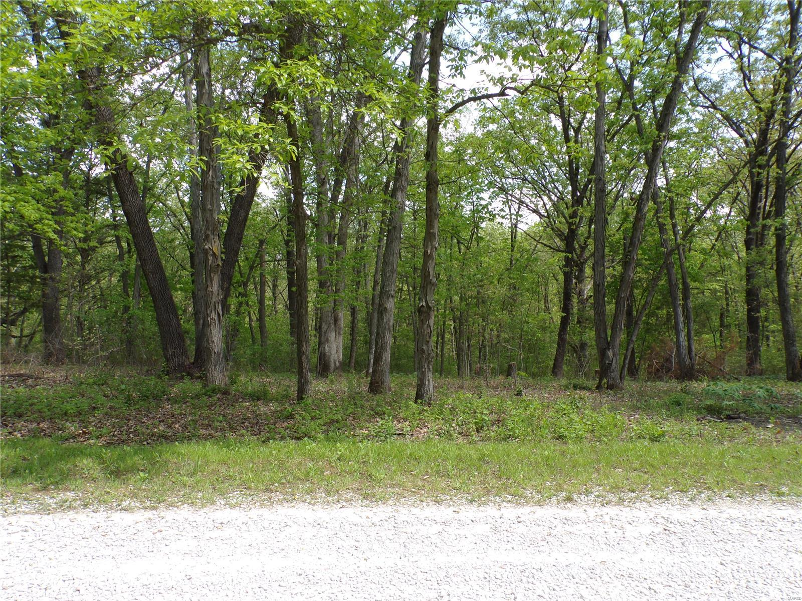 30 Green Ranch Est Property Photo - Stoutsville, MO real estate listing