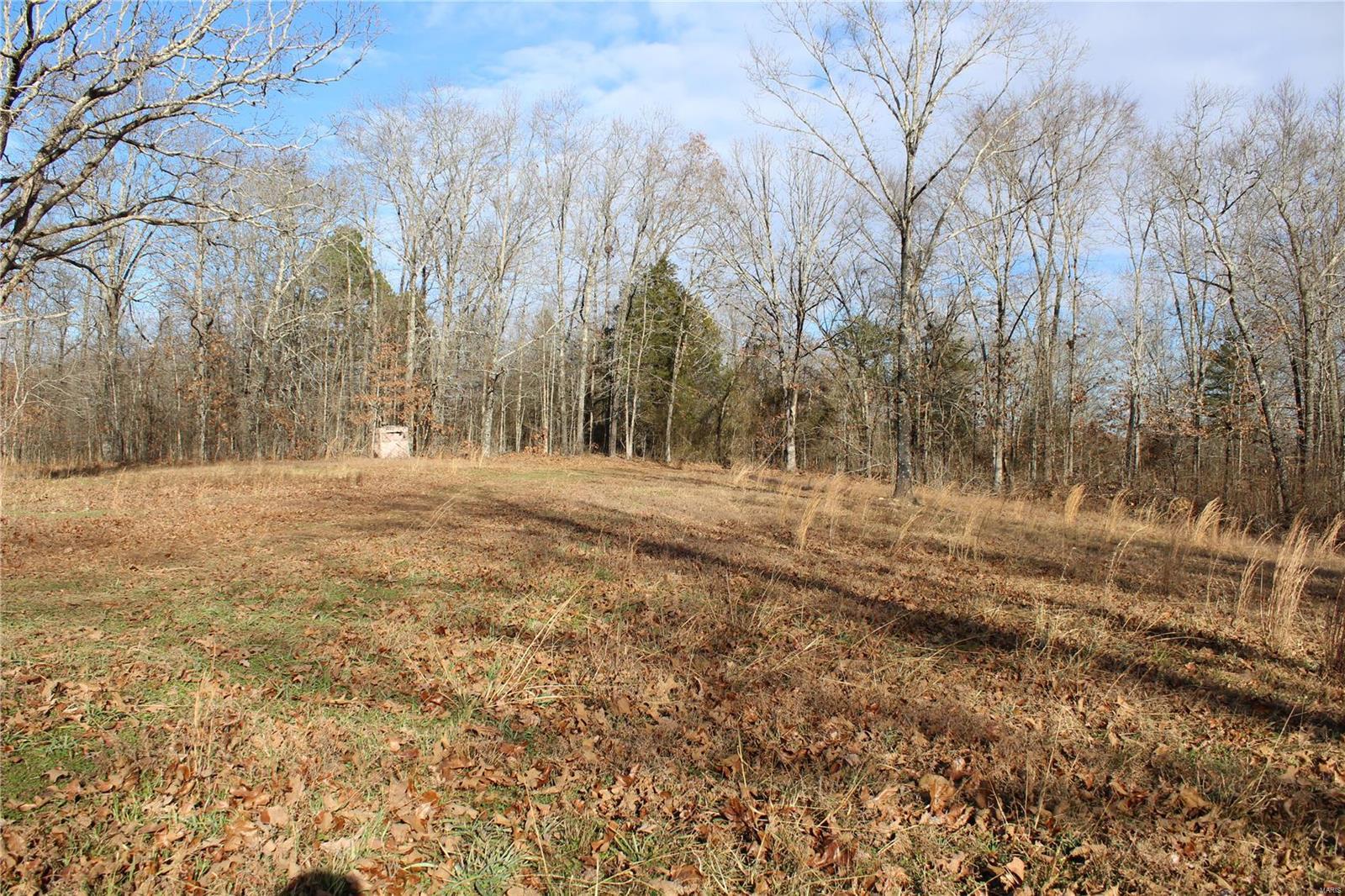 0 County Road 706 Property Photo - Zalma, MO real estate listing