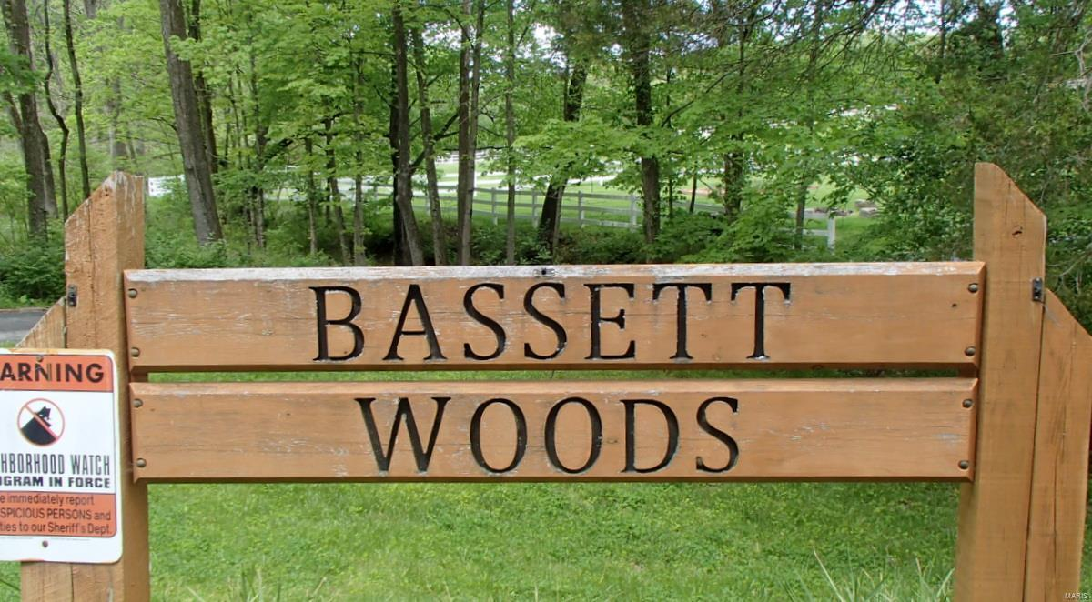 38 Bassett Woods Drive Property Photo - Unincorporated, MO real estate listing