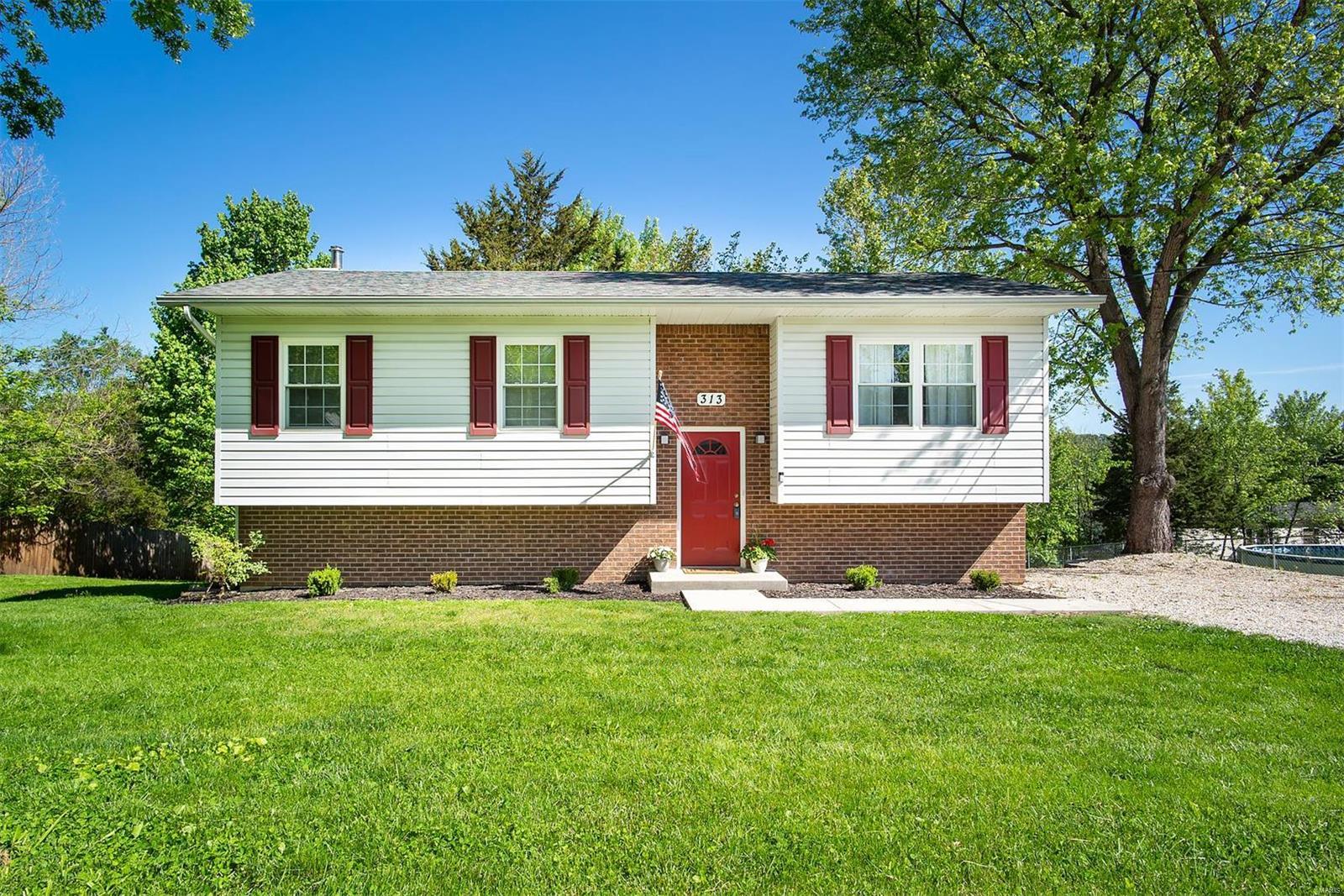 313 Kronos Property Photo - De Soto, MO real estate listing