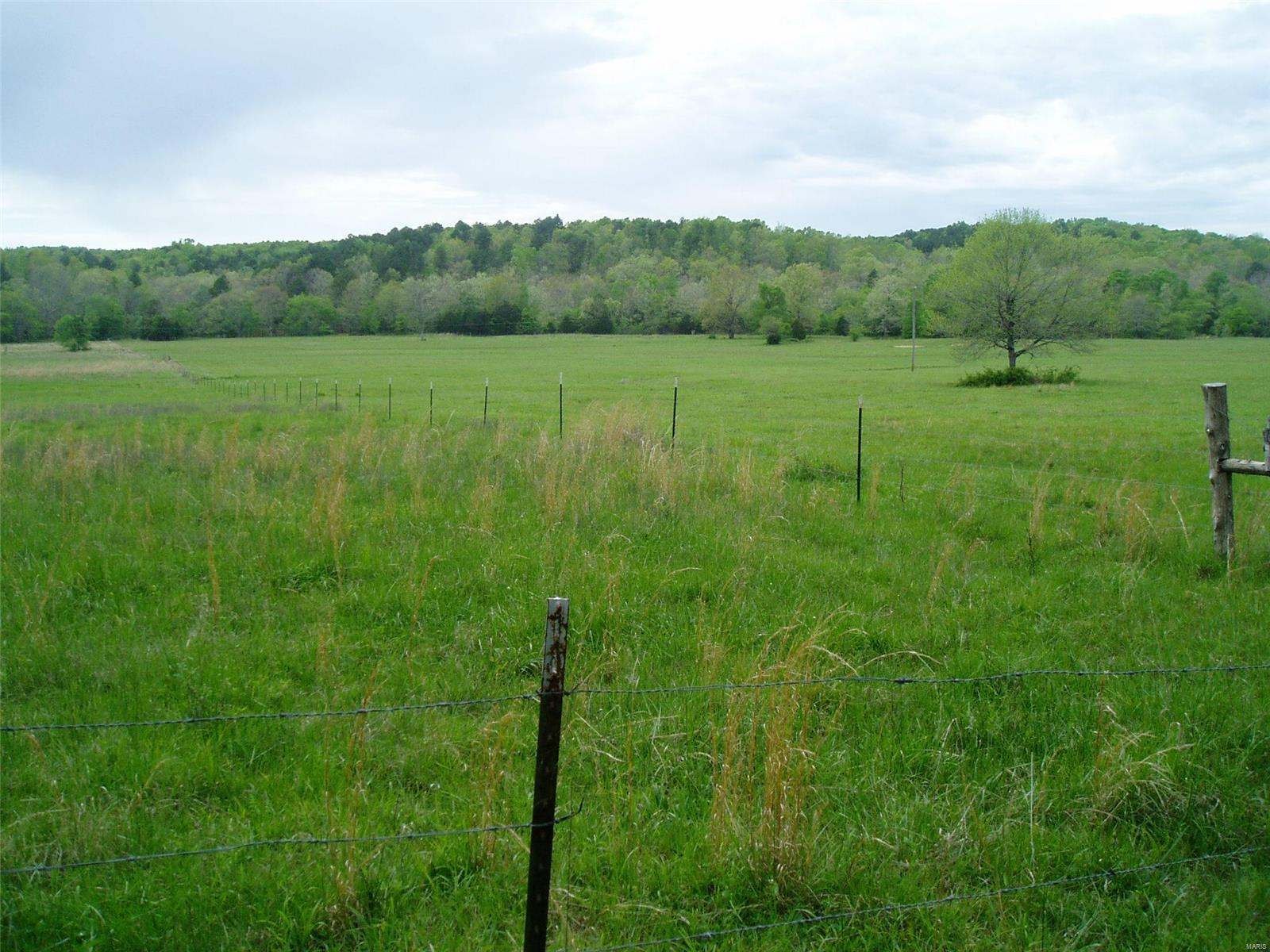 223 County Road Property Photo - Lowndes, MO real estate listing