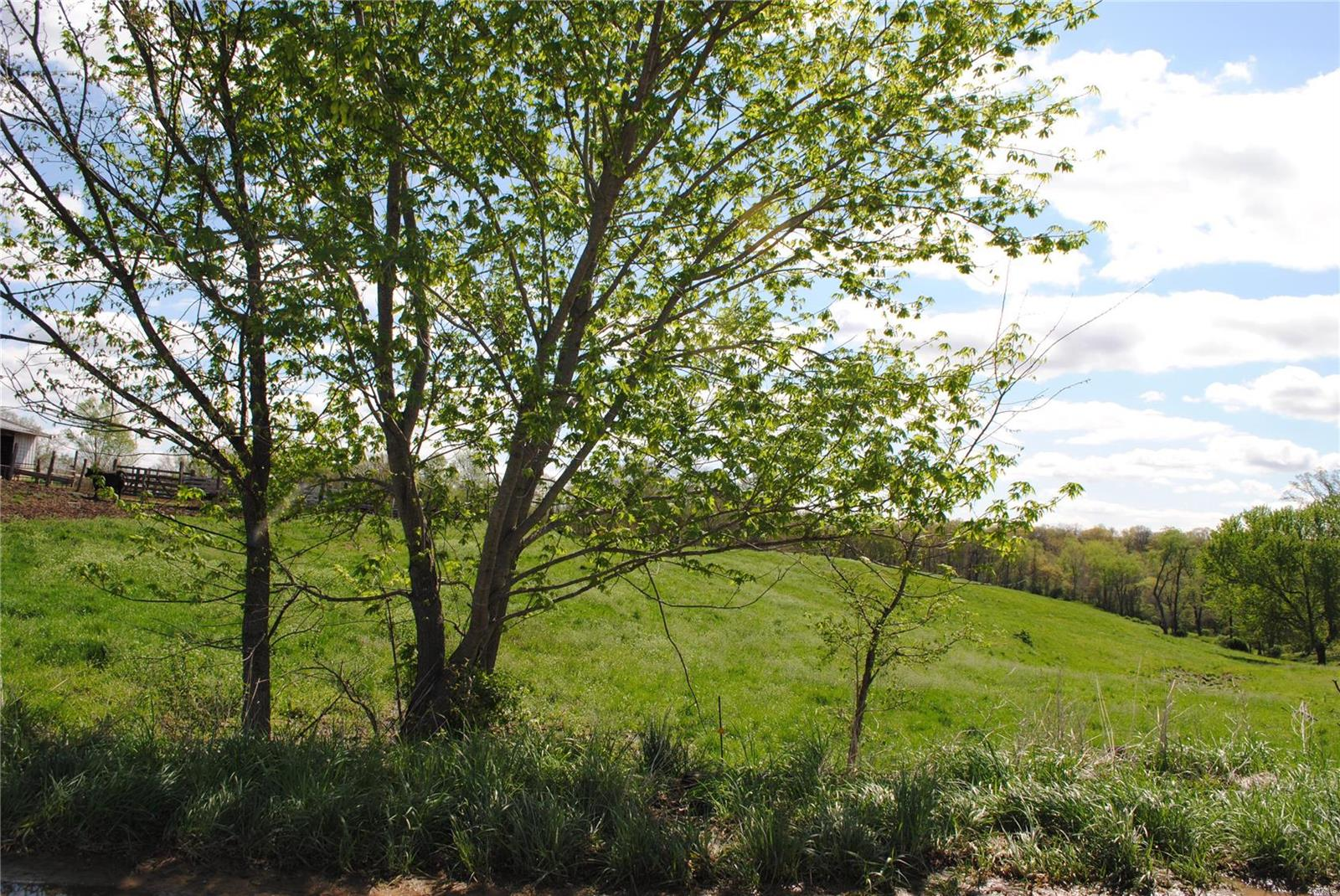 58 COUNTY LINE Road Property Photo - Brighton, IL real estate listing