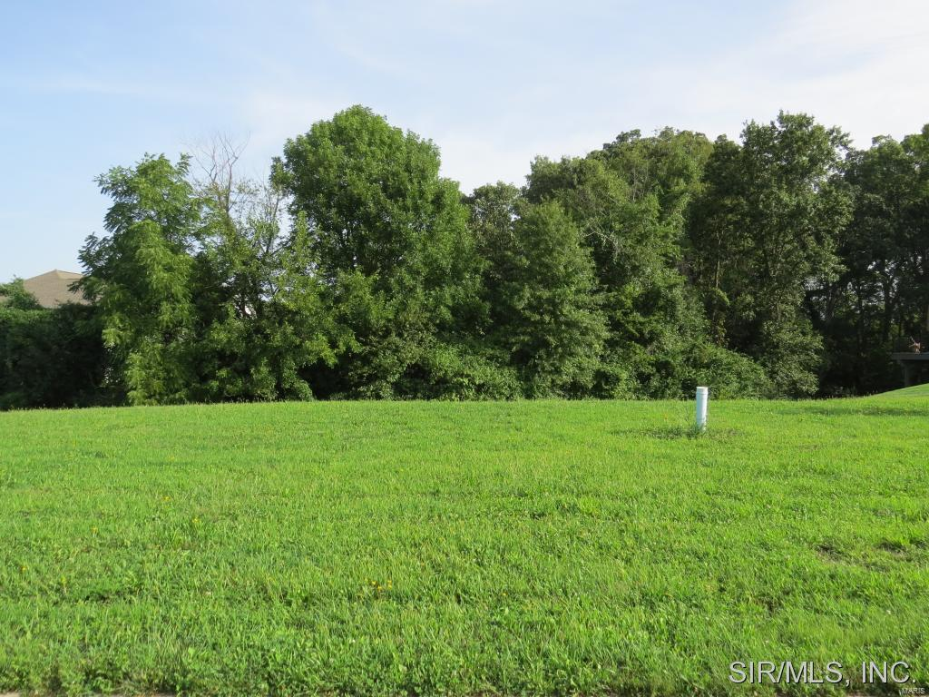 717 ADMIRAL WENDT Parkway Property Photo - Millstadt, IL real estate listing