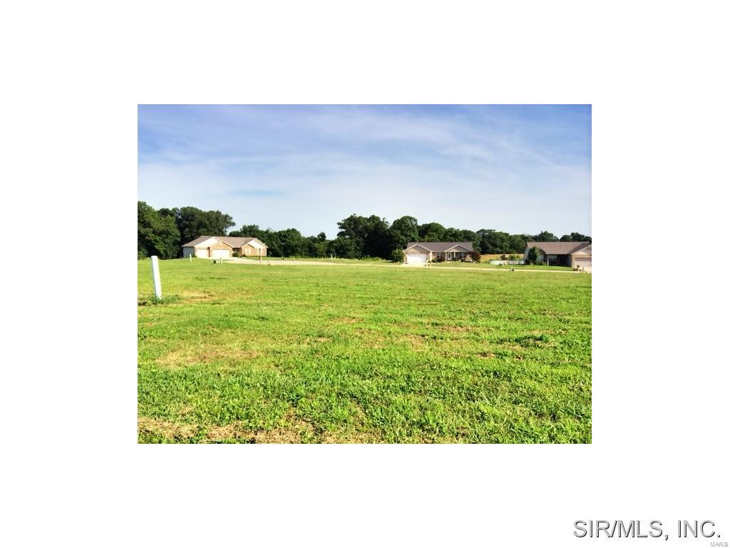 435 BLUFF MEADOWS Drive Property Photo - Valmeyer, IL real estate listing