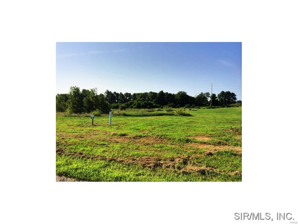 522 Cliff View Place Property Photo - Valmeyer, IL real estate listing