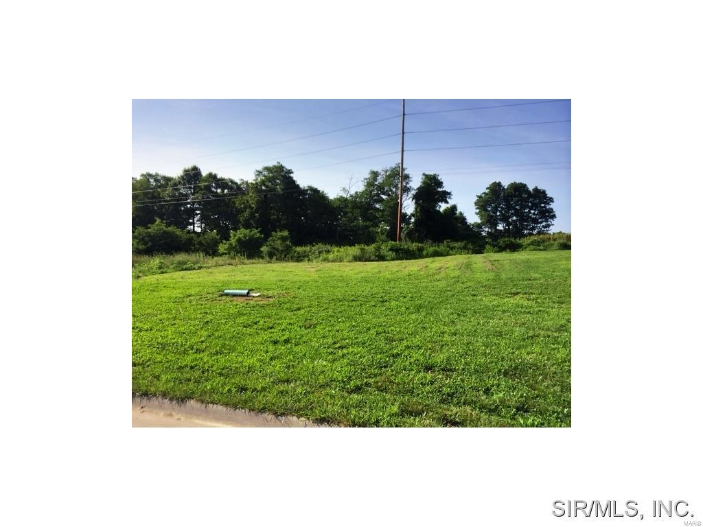 520 Bluff Meadows Drive Property Photo - Valmeyer, IL real estate listing