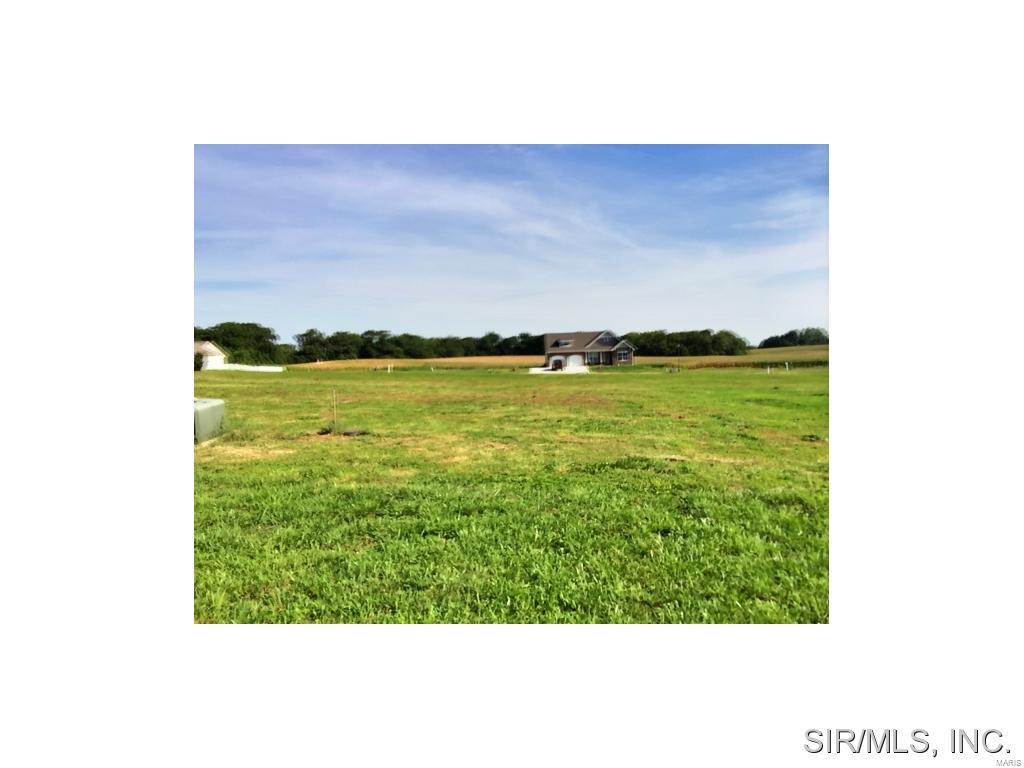 505 BLUFF MEADOWS Drive Property Photo - Valmeyer, IL real estate listing