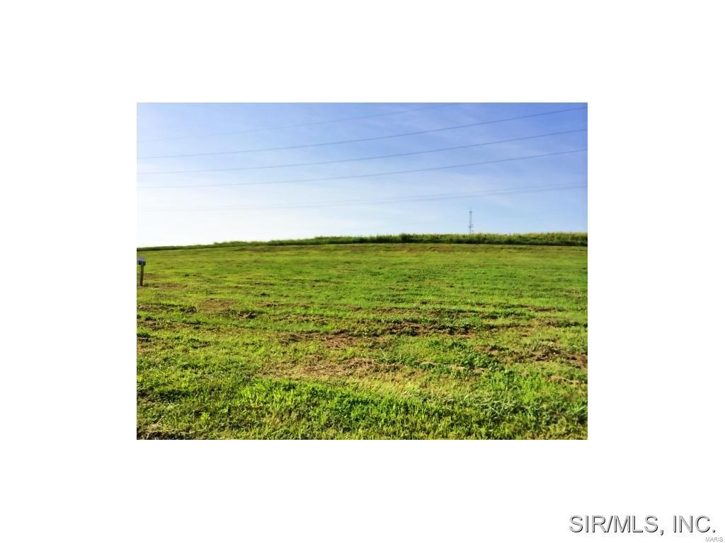 428 BLUFF MEADOWS Drive Property Photo - Valmeyer, IL real estate listing