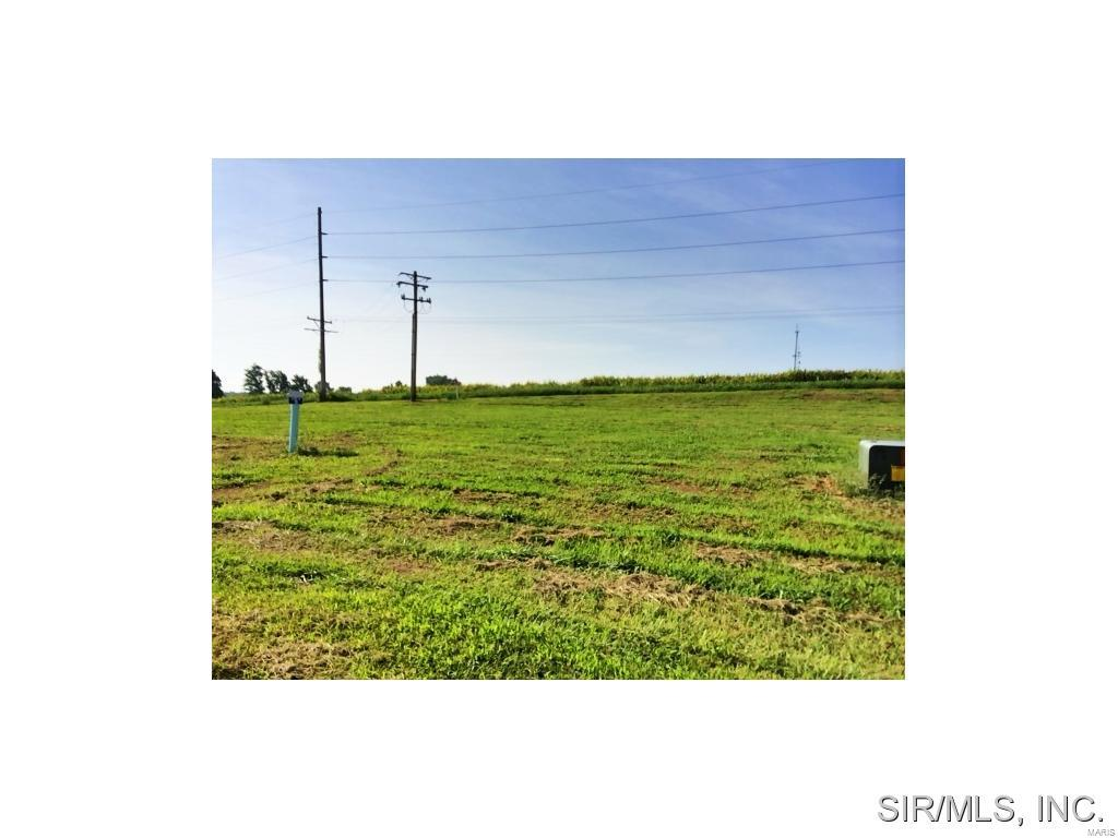 432 BLUFF MEADOWS Drive Property Photo - Valmeyer, IL real estate listing