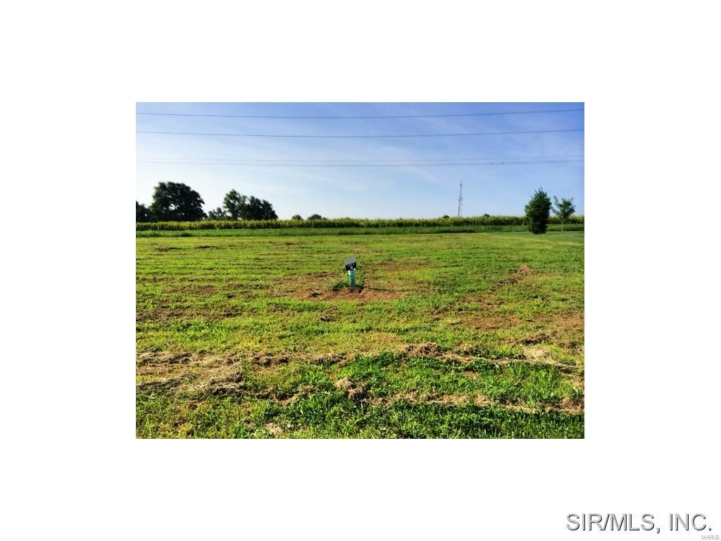 500 BLUFF MEADOWS Drive Property Photo - Valmeyer, IL real estate listing