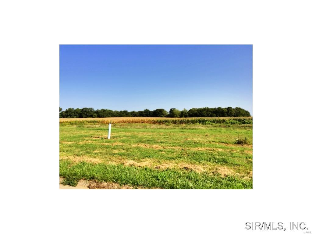515 CLIFF VIEW Drive Property Photo - Valmeyer, IL real estate listing