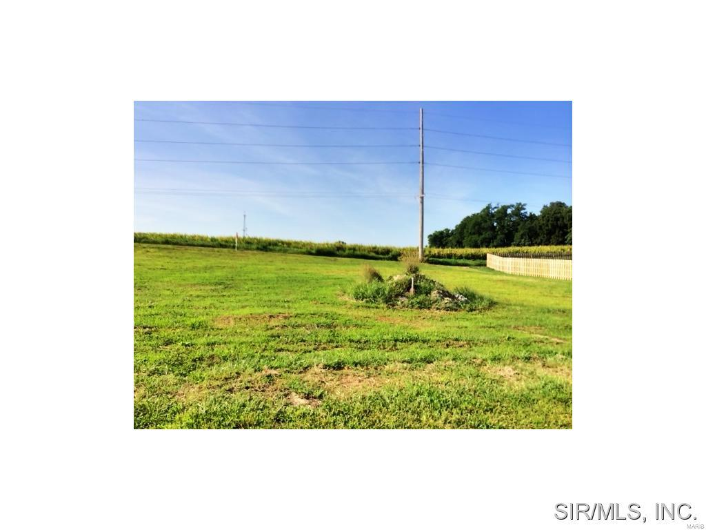 424 BLUFF MEADOWS Drive Property Photo - Valmeyer, IL real estate listing