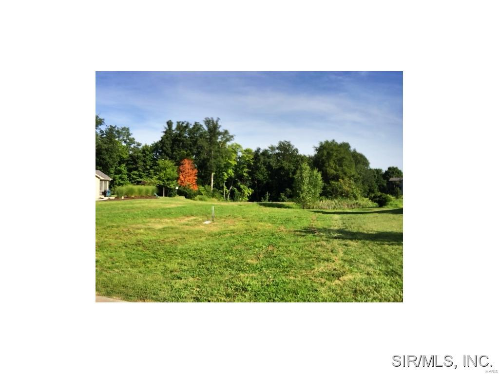 419 BLUFF MEADOWS Drive Property Photo - Valmeyer, IL real estate listing