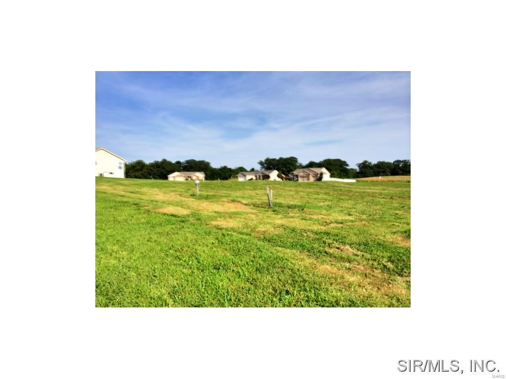 BLUFF MEADOWS Drive Property Photo - Valmeyer, IL real estate listing