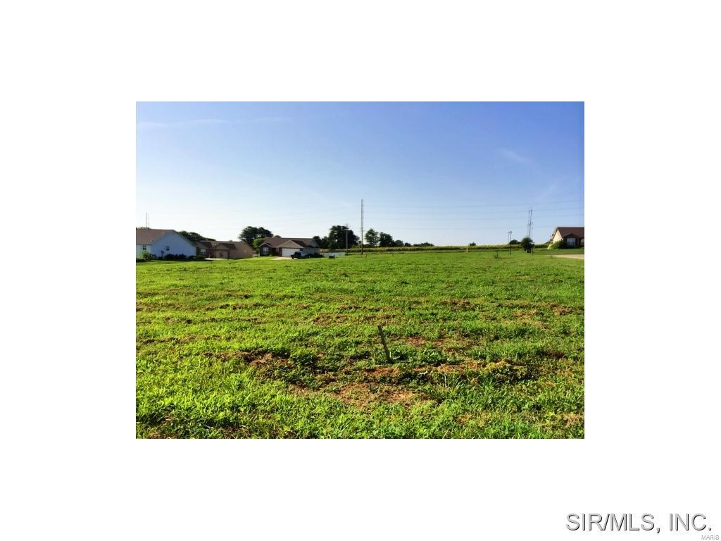 CLIFF VIEW Place Property Photo - Valmeyer, IL real estate listing