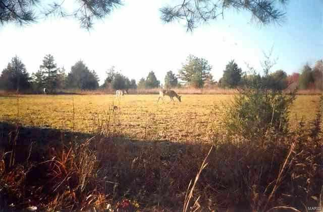 54 Highway O Property Photo - Marquand, MO real estate listing