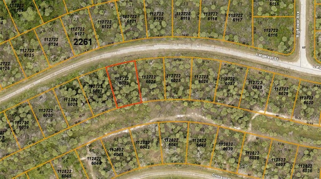 1127226023 Largeleaf Street Property Photo
