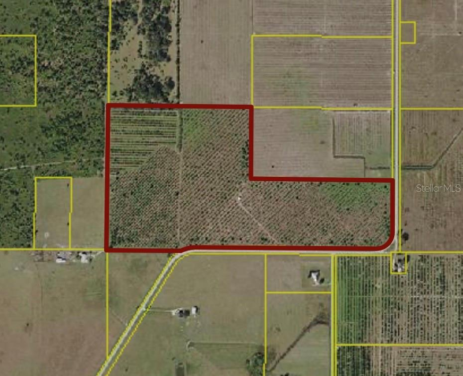 SW CO ROAD 661 Property Photo - ARCADIA, FL real estate listing