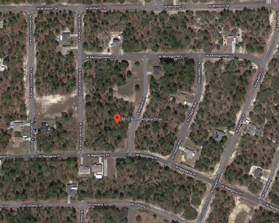 9810 N ANGELA DRIVE Property Photo