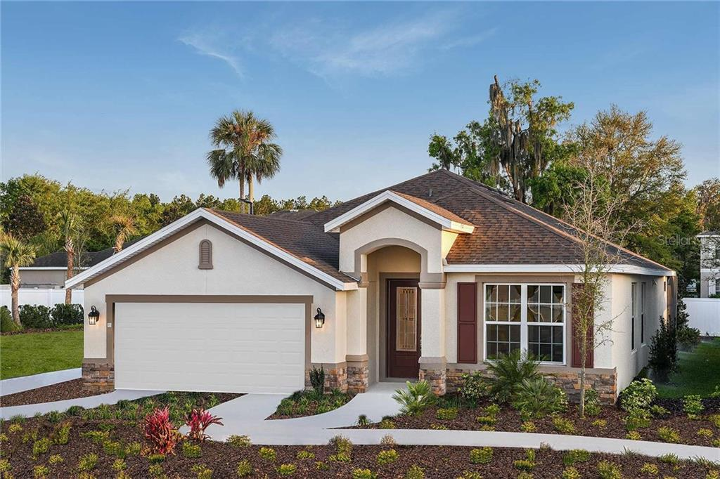 29970 CHAPEL CHASE DR Property Photo - WESLEY CHAPEL, FL real estate listing