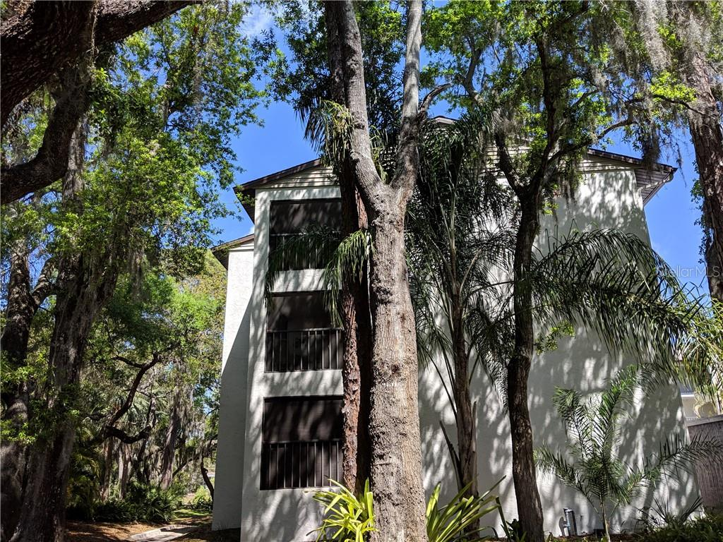 2748 Orchid Oaks Drive #202 Property Photo