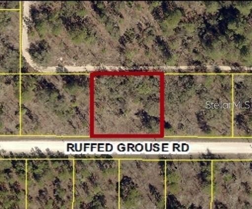 13303 RUFFED GROUSE ROAD Property Photo