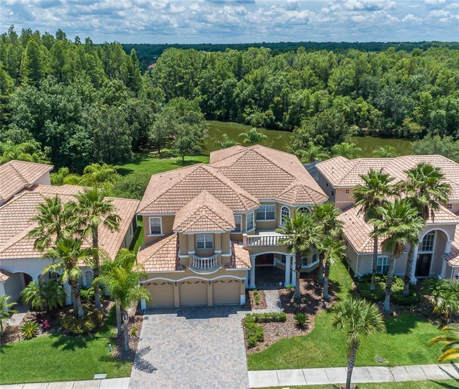 10541 MARTINIQUE ISLE DRIVE Property Photo - TAMPA, FL real estate listing