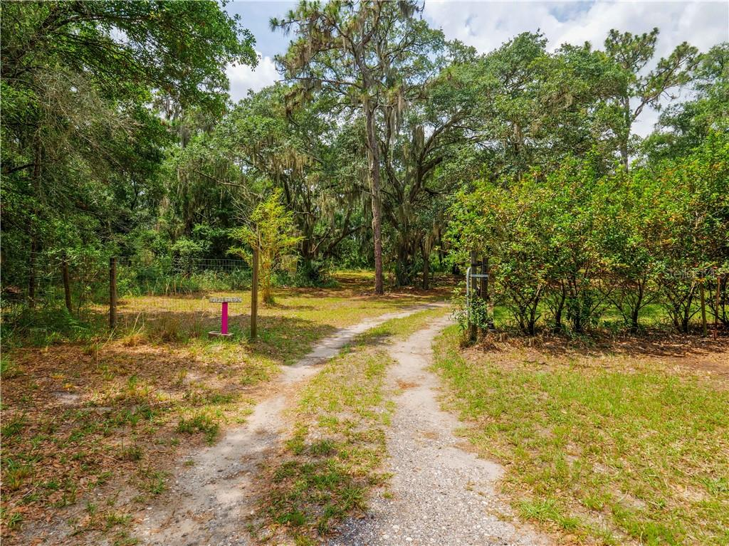 12121 FRED DRIVE Property Photo - RIVERVIEW, FL real estate listing