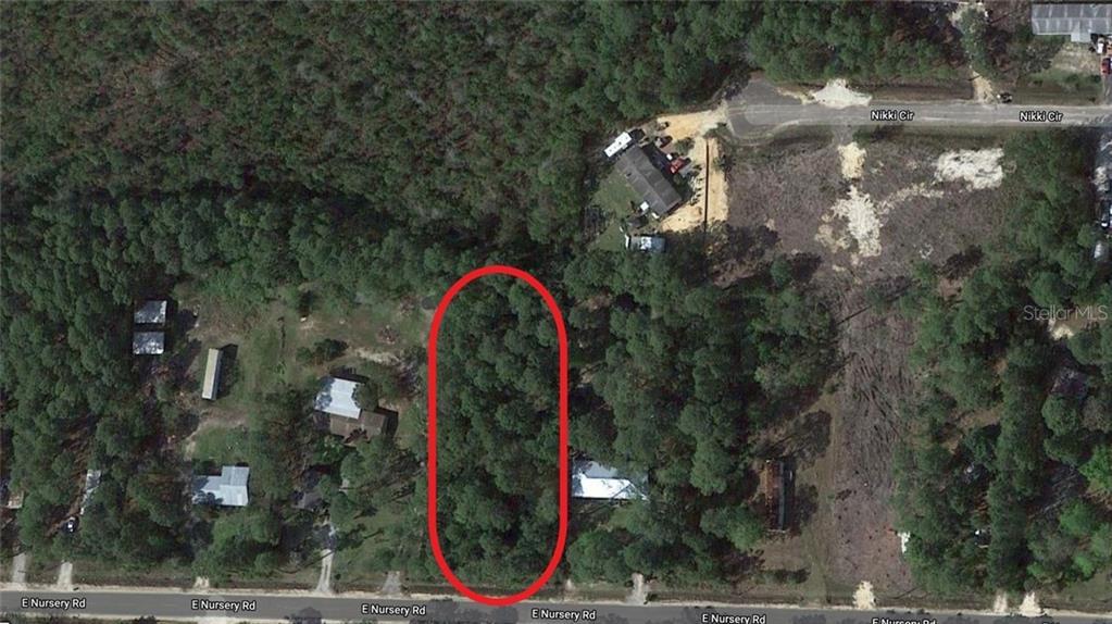 245 E NURSERY RD Property Photo - SANTA ROSA BEACH, FL real estate listing