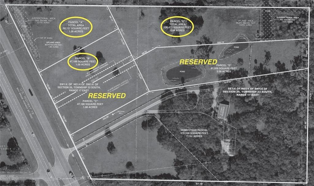 7000 US 19 Property Photo - TERRA CEIA, FL real estate listing