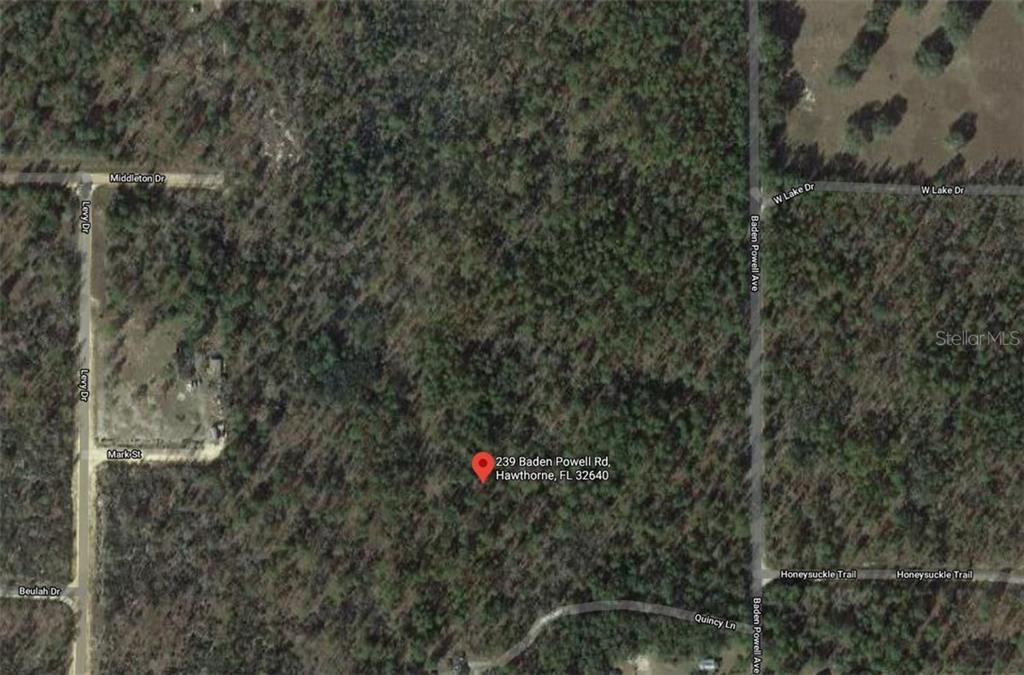 239 BADEN POWELL ROAD Property Photo - HAWTHORNE, FL real estate listing