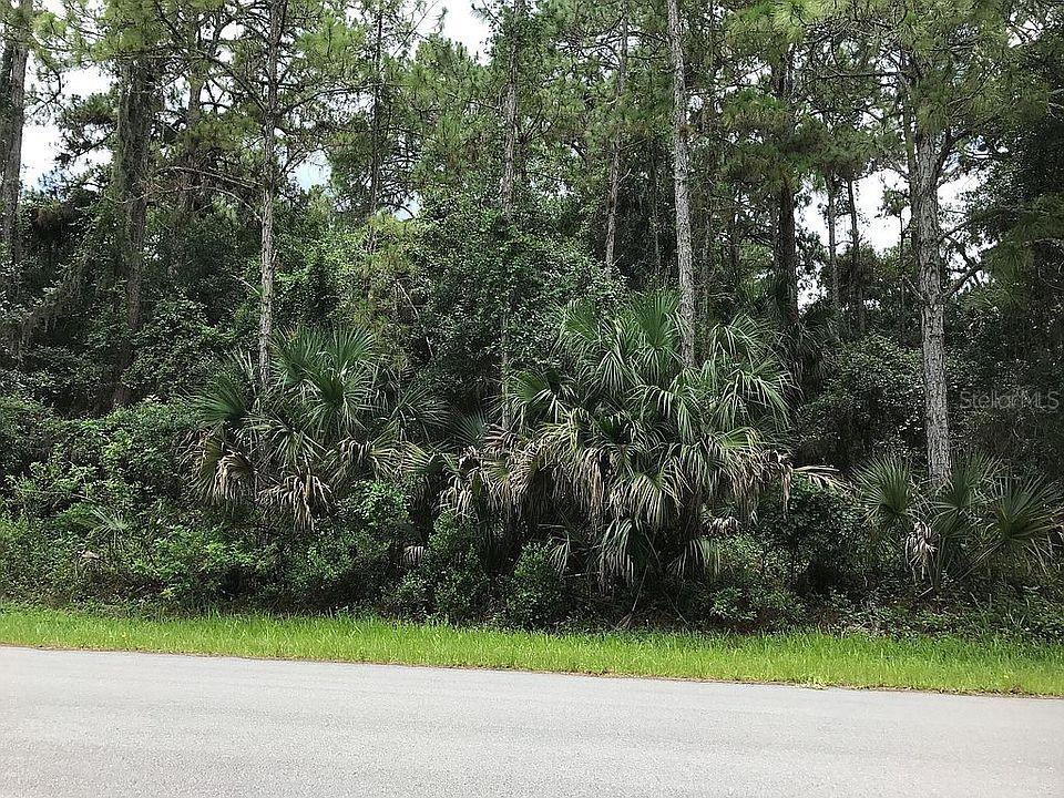 Ocarina Road Property Photo