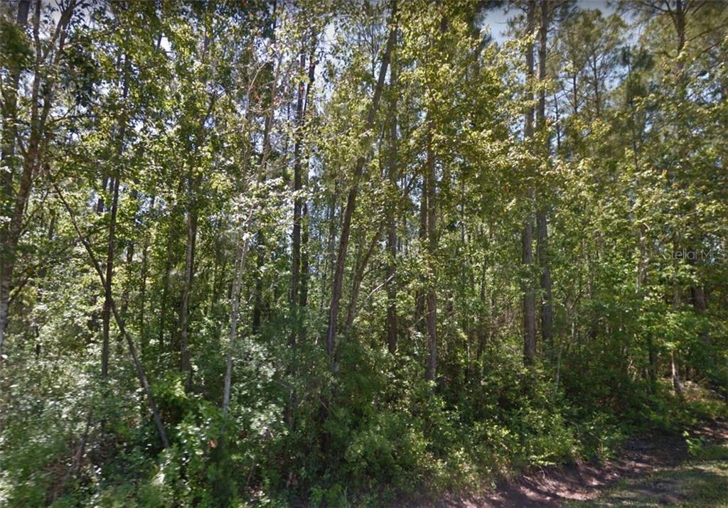10125 S Loop Road Property Photo
