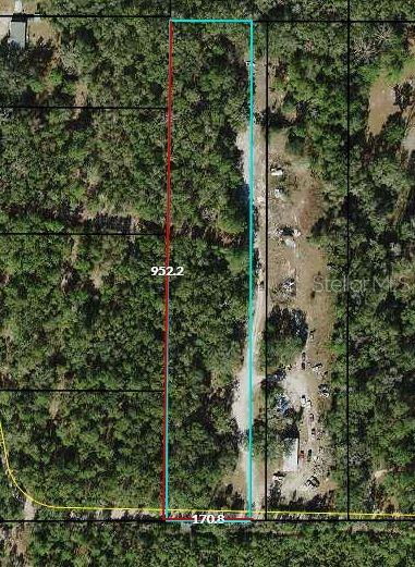 390 DONALDSON WILLIAMS ROAD Property Photo - CRAWFORDVILLE, FL real estate listing