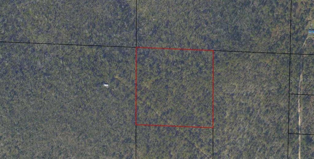 11651 WALNUT LANE Property Photo - FOUNTAIN, FL real estate listing