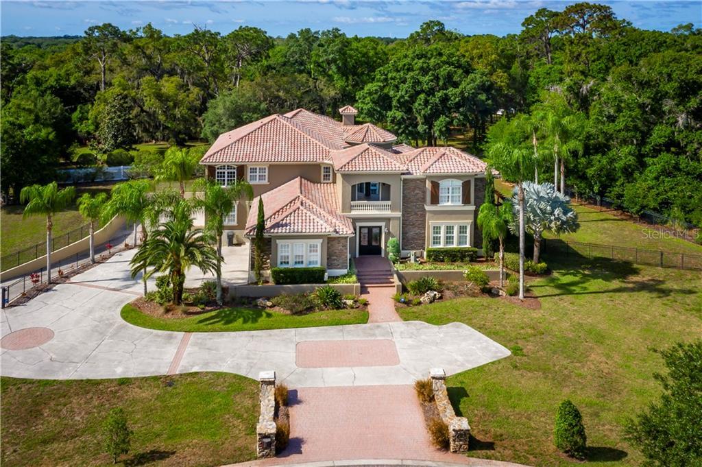 8610 DOLCE VITA LANE Property Photo - ODESSA, FL real estate listing