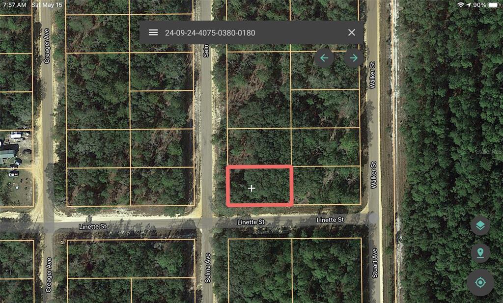 804 Selma Avenue Property Photo 1