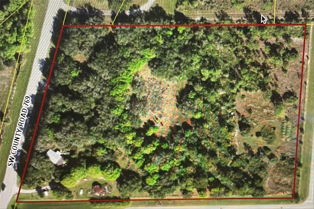 9394 SW COUNTY ROAD 769 Property Photo - ARCADIA, FL real estate listing
