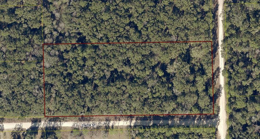 13705 SUWANNEE BOULEVARD Property Photo - O BRIEN, FL real estate listing