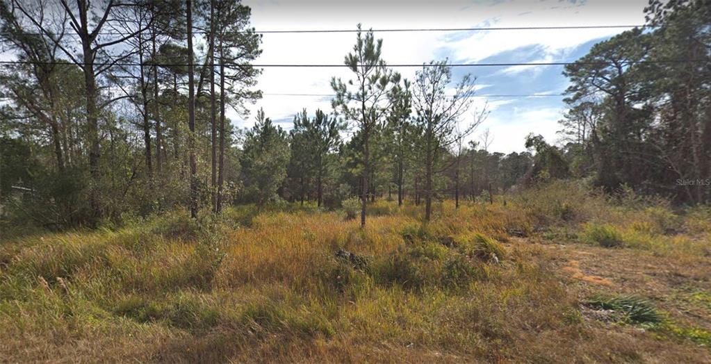 3349 Pine Oaks Lane Property Photo
