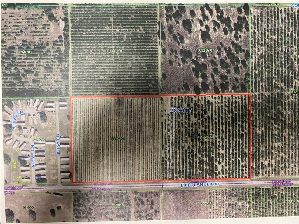 FRIEDLANDER ROAD Property Photo - BABSON PARK, FL real estate listing