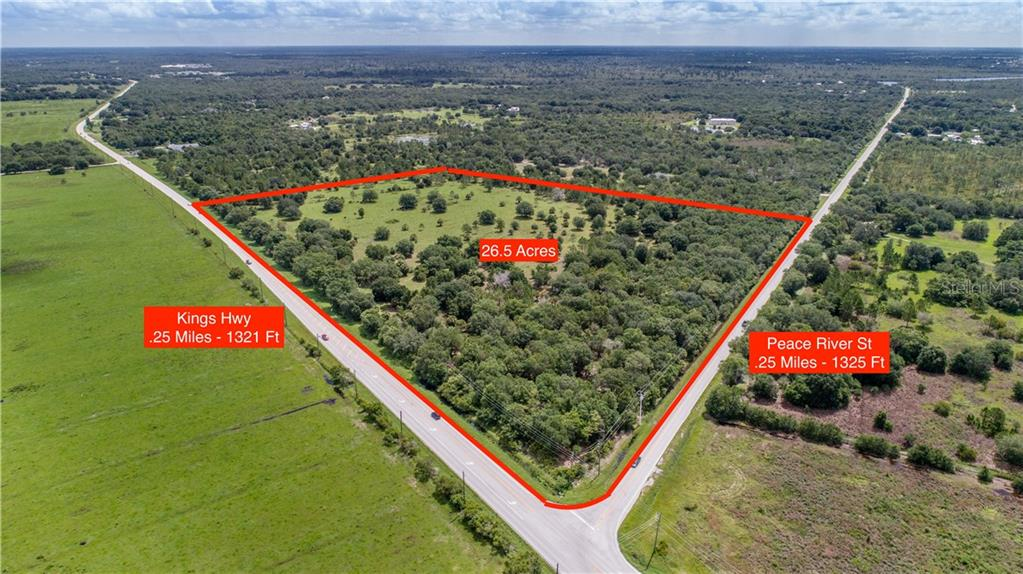 SW PEACE RIVER ST Property Photo - ARCADIA, FL real estate listing